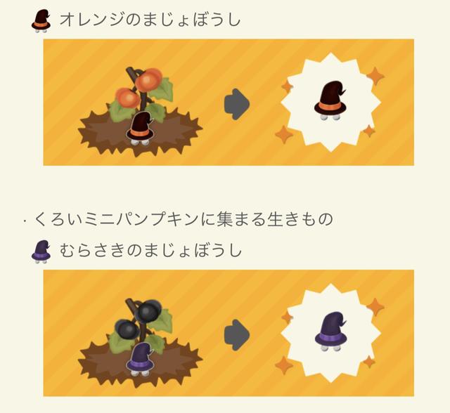 【ガーデン】カボチャ魔女帽子.PNG