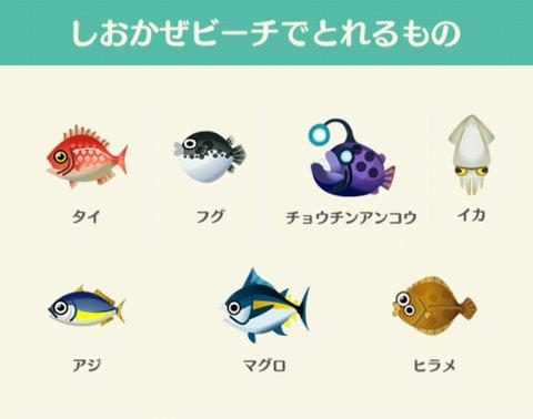 【レア】魚.jpg