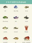 魚(川).png